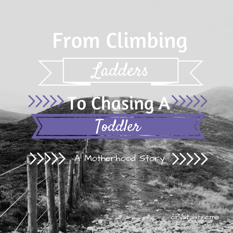 From Climbing Ladders to Chasing a Toddler - crystalstine.me